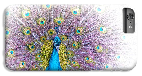 iPhone 6 Plus Case - Peacock by Holly Kempe