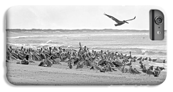 Pelican Convention  IPhone 6 Plus Case by Betsy Knapp