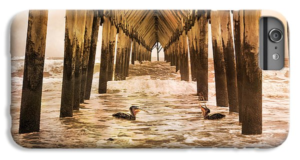 Pelican Paradise IPhone 6 Plus Case by Betsy Knapp