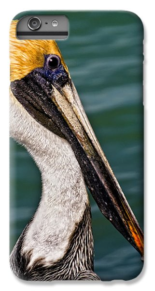 Pelican Profile No.40 IPhone 6 Plus Case by Mark Myhaver