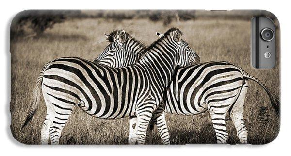 Perfect Zebras IPhone 6 Plus Case by Delphimages Photo Creations
