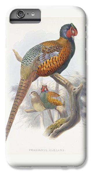 Phasianus Elegans Elegant Pheasant IPhone 6 Plus Case by Daniel Girard Elliot