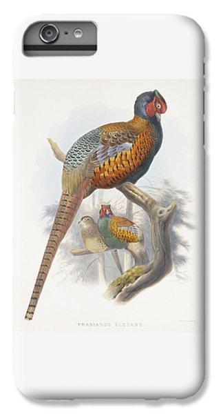 Phasianus Elegans Elegant Pheasant IPhone 6 Plus Case