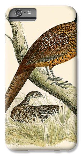 Pheasant IPhone 6 Plus Case by Beverley R Morris