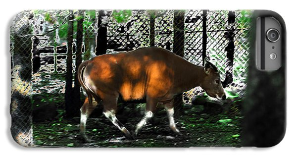 Phenomena Of Banteng Walk IPhone 6 Plus Case