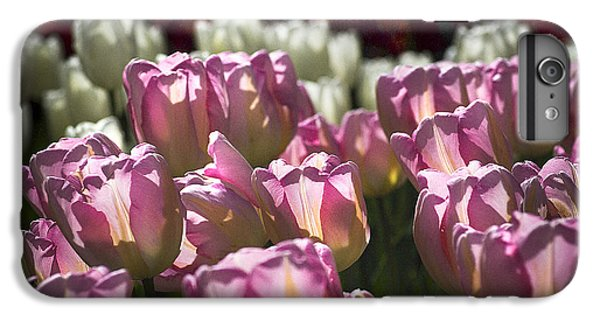 IPhone 6 Plus Case featuring the photograph Pink Tulips by Yulia Kazansky