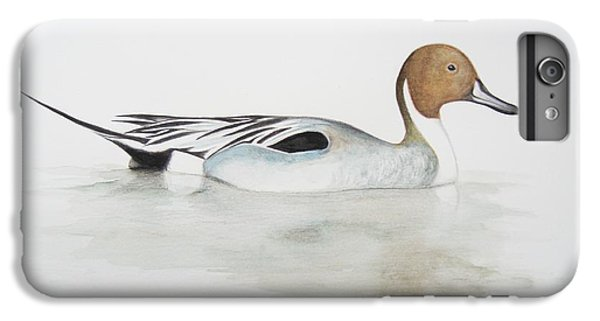 Pintail Duck IPhone 6 Plus Case by Ele Grafton