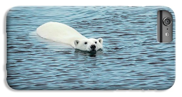 Polar Bear Swimming IPhone 6 Plus Case by Peter J. Raymond