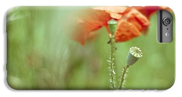 Follow iPhone 6 Plus Case - #poppy #poppies #red #green by Georgia Fowler