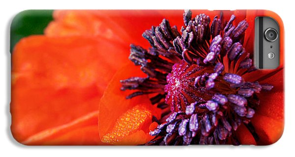 Poppy's Purple Passion IPhone 6 Plus Case by Bill Pevlor