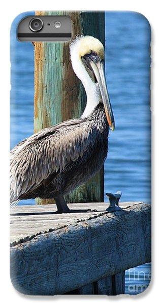 Posing Pelican IPhone 6 Plus Case