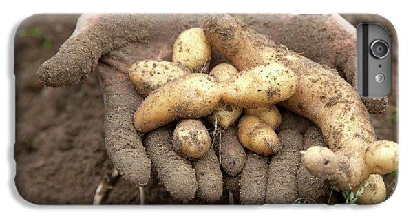 Potato Harvest IPhone 6 Plus Case by Jim West
