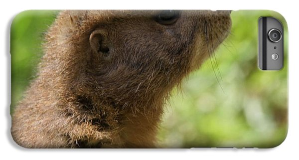 Prairie Dog Portrait IPhone 6 Plus Case