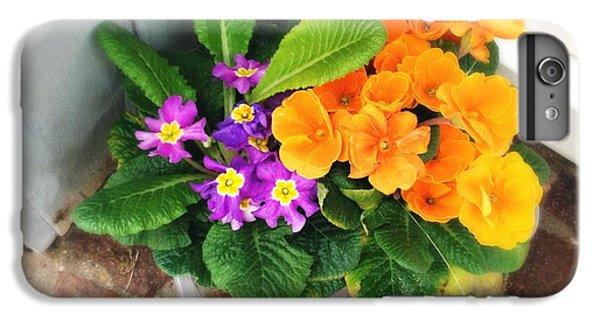 Orange iPhone 6 Plus Case - Purple And Orange Flowers by Matthias Hauser