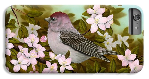 Purple Finch IPhone 6 Plus Case by Rick Bainbridge