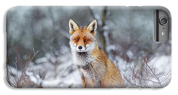 Red Fox Blue World IPhone 6 Plus Case by Roeselien Raimond
