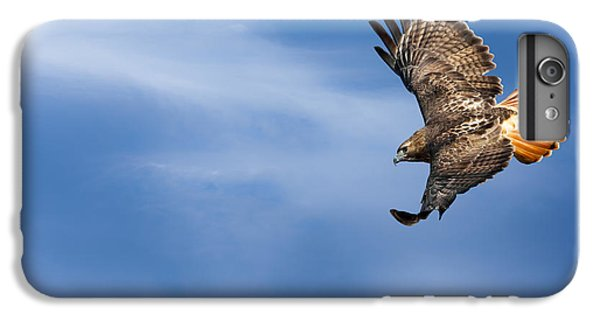 Red Tailed Hawk Soaring IPhone 6 Plus Case by Bill Wakeley