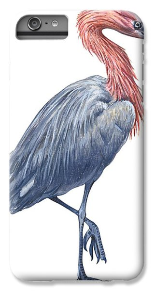 Reddish Egret IPhone 6 Plus Case by Anonymous