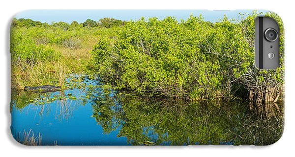 Anhinga iPhone 6 Plus Case - Reflection Of Trees In A Lake, Anhinga by Panoramic Images