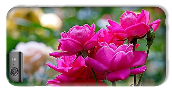 Rittenhouse Square Roses IPhone 6 Plus Case by Rona Black