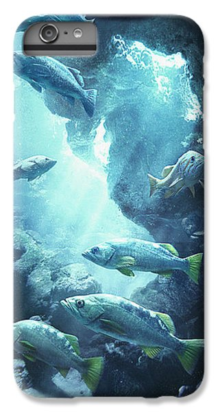 Rockfish Sanctuary IPhone 6 Plus Case by Javier Lazo