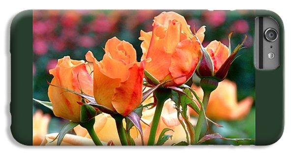 Rose Bunch IPhone 6 Plus Case