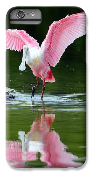 Roseate Spoonbill IPhone 6 Plus Case by Clint Buhler