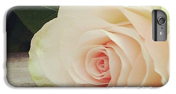 Decorative iPhone 6 Plus Case - Rosebud On Wood by Jacqueline Schreiber