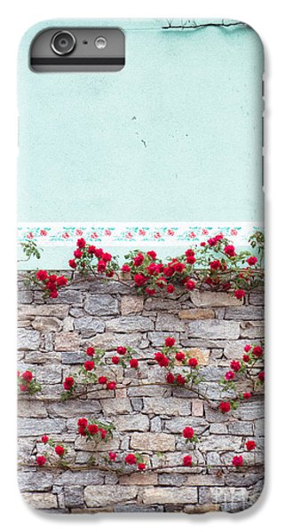 Roses On A Wall IPhone 6 Plus Case by Silvia Ganora