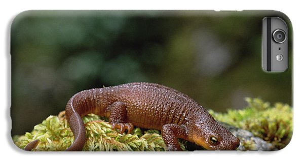 Rough-skinned Newt Oregon IPhone 6 Plus Case by Gerry Ellis