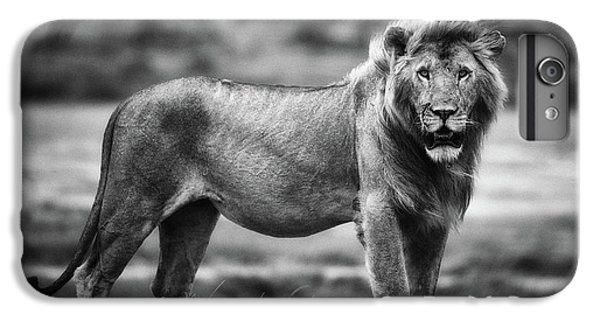 Lion iPhone 6 Plus Case - Royal Pose by Mohammed Alnaser