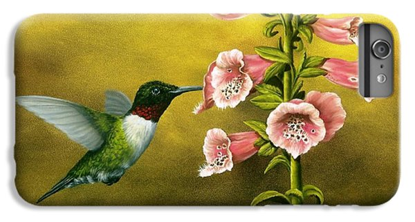 Ruby Throated Hummingbird And Foxglove IPhone 6 Plus Case