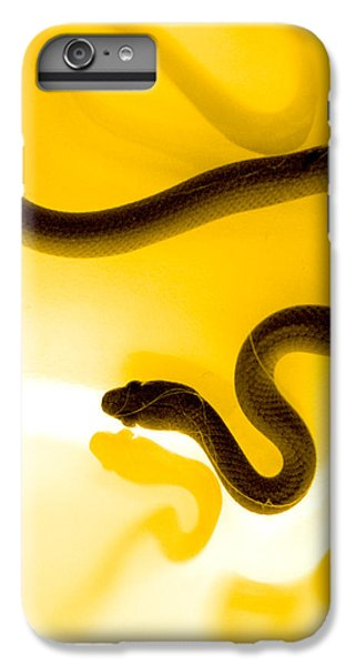 Garden Snake iPhone 6 Plus Case - S by Holly Kempe