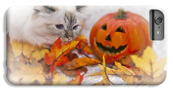 Birman iPhone 6 Plus Case - Sacred Cat Of Burma Halloween by Melanie Viola