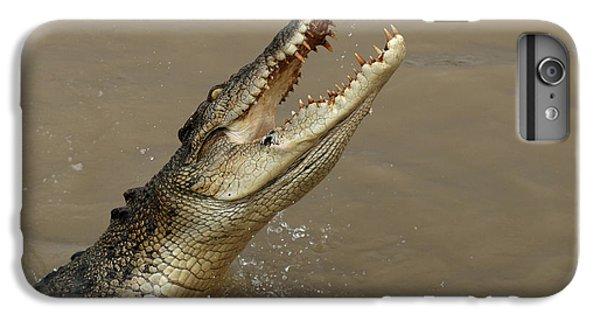 Salt Water Crocodile Australia IPhone 6 Plus Case by Bob Christopher