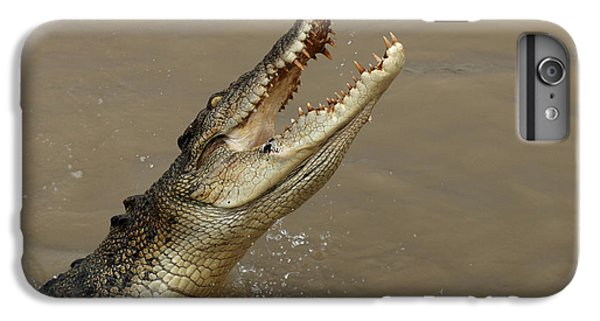 Salt Water Crocodile Australia IPhone 6 Plus Case by Bob Christopher