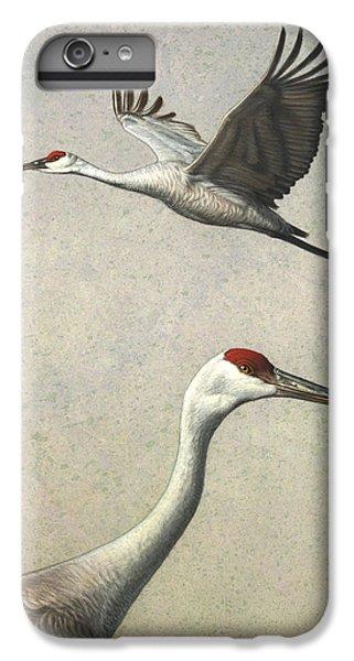 Stork iPhone 6 Plus Case - Sandhill Cranes by James W Johnson