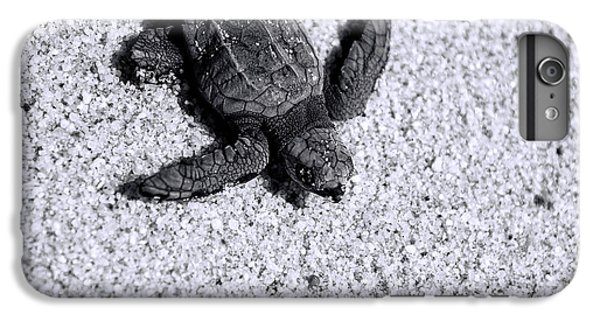 Sea Turtle In Black And White IPhone 6 Plus Case by Sebastian Musial