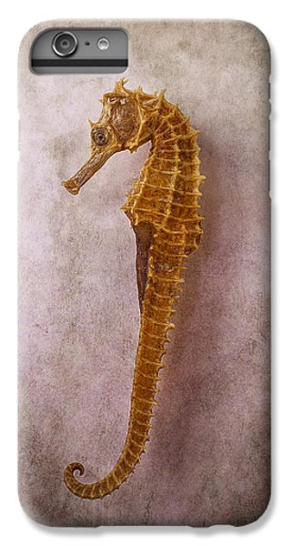 Seahorse Still Life IPhone 6 Plus Case