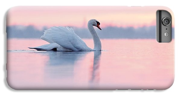 Swan iPhone 6 Plus Case - Serenity   Mute Swan At Sunset by Roeselien Raimond