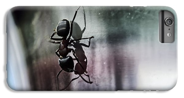 Ant iPhone 6 Plus Case - Shadow Dancing by Susan Capuano