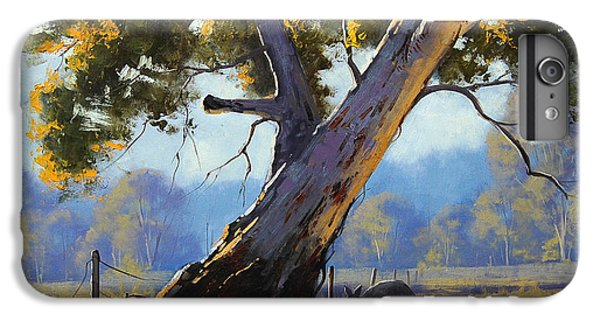 Shady Tree IPhone 6 Plus Case by Graham Gercken