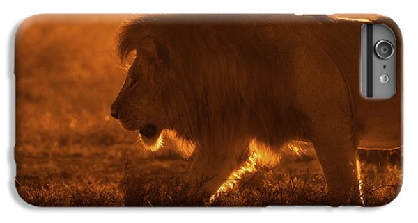 Lion iPhone 6 Plus Case - Shiny King by Mohammed Alnaser