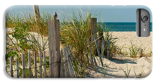Sparrow iPhone 6 Plus Case - Singer At The Shore by Michelle Wiarda-Constantine