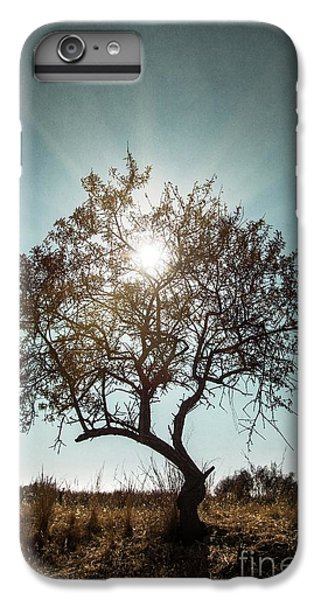 Single Tree IPhone 6 Plus Case