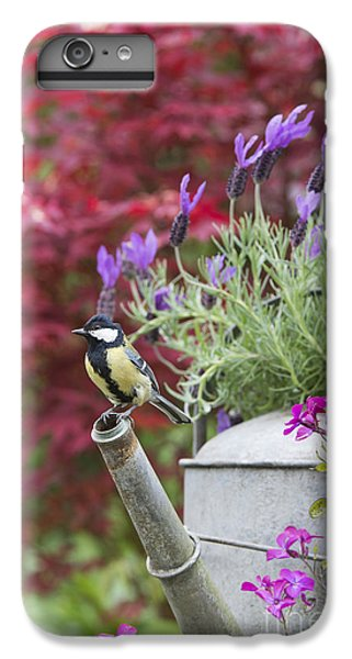 Titmouse iPhone 6 Plus Case - Sitting Pretty by Tim Gainey