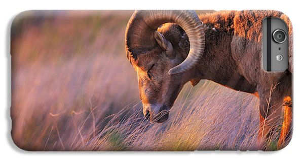 Wildlife iPhone 6 Plus Case - Smell The Wind by Kadek Susanto