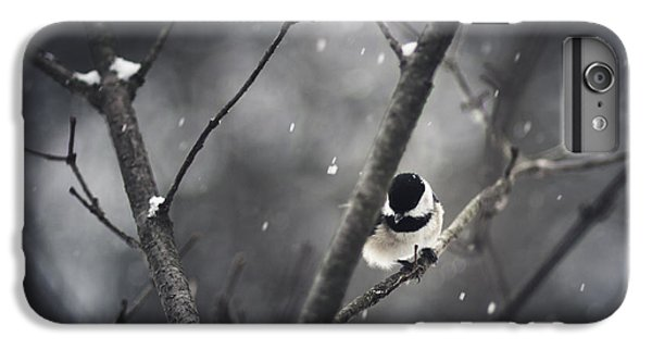 Chickadee iPhone 6 Plus Case - Snowy Chickadee by Shane Holsclaw