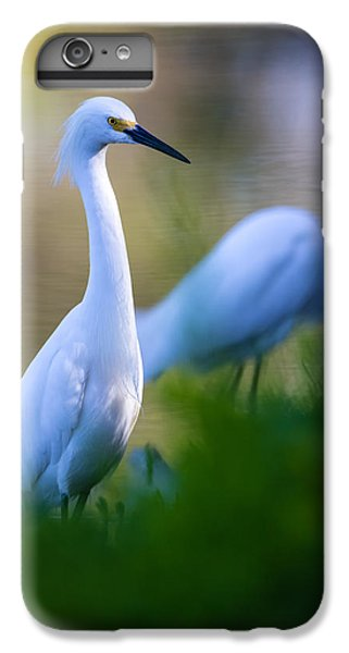 Snowy Egret On A Lush Green Foreground IPhone 6 Plus Case