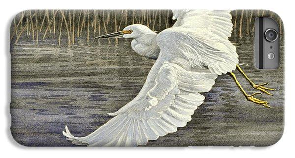 Egret iPhone 6 Plus Case - Snowy Egret by Paul Krapf